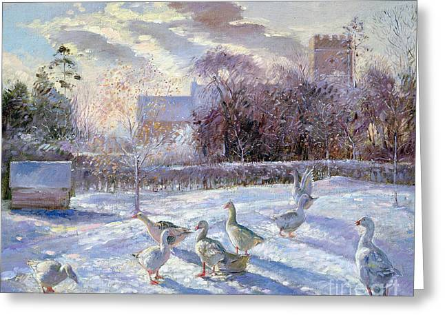 Churchyard Greeting Cards - Winter Geese in Church Meadow Greeting Card by Timothy Easton
