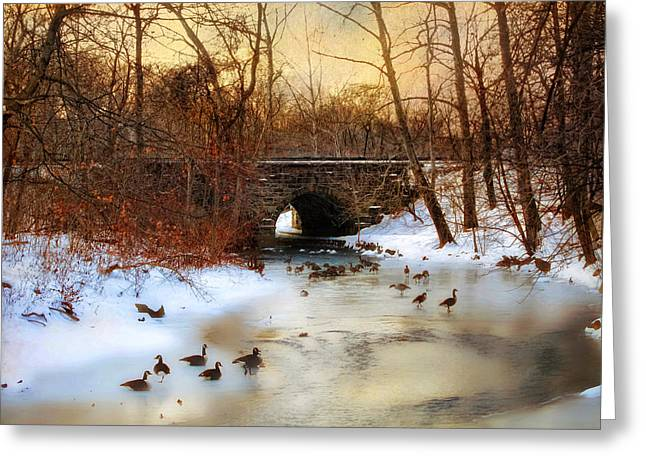 Winter Landscape Digital Greeting Cards - Winter Geese Greeting Card by Jessica Jenney