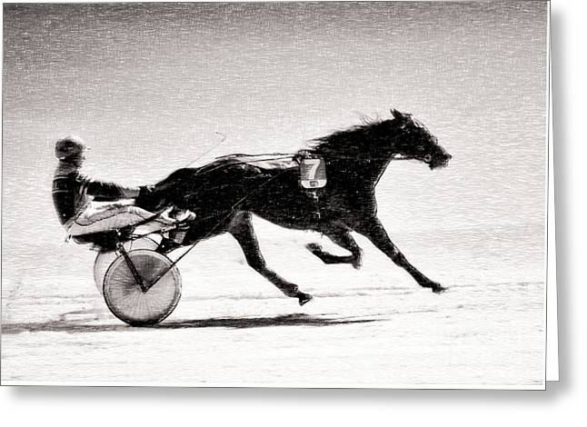 Race Horse Mixed Media Greeting Cards - Winter Harness Racing Greeting Card by Ari Salmela