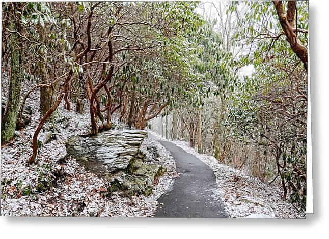Winter Hiking Trail Greeting Card by Susan Leggett