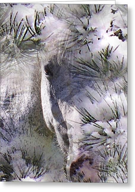 Hiding Digital Art Greeting Cards - Winter Horse Greeting Card by Terril Heilman