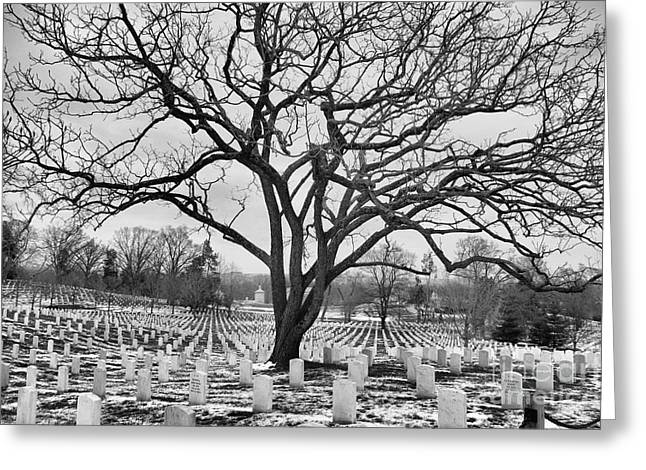Civil Greeting Cards - Winter In Arlington National Cemetery Greeting Card by John S