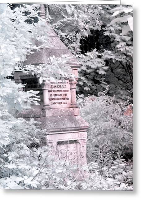 Abney Park Greeting Cards - Winter infrared cemetery Greeting Card by Helga Novelli