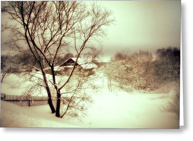 Gloomy Winter Greeting Cards - Winter Loneliness Greeting Card by Jenny Rainbow