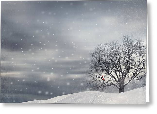 Four Greeting Cards - Winter Greeting Card by Lourry Legarde