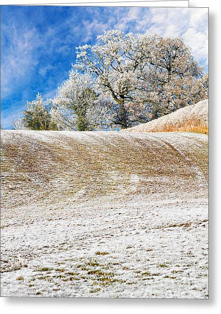 Winter Greeting Card by Meirion Matthias
