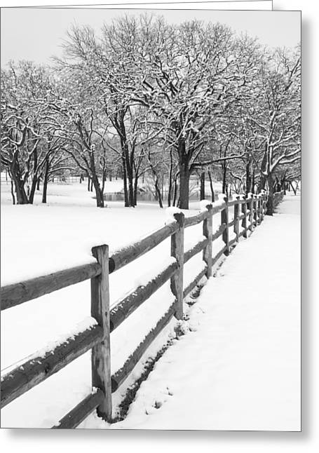 Texas Landscape Greeting Cards - Winter Greeting Card by Mike Irwin
