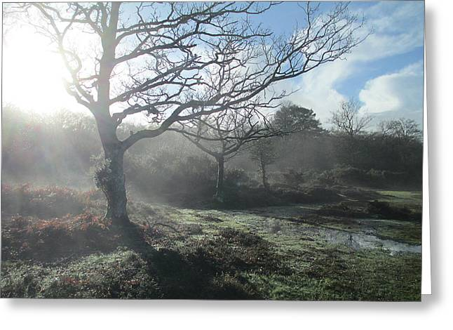 Winter Mist Greeting Card by The Rambler