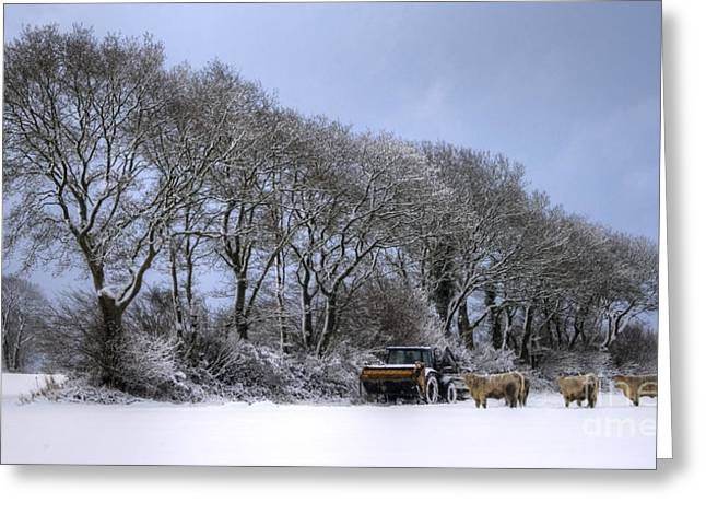 Winter Morning On The Farm Greeting Card by Sophie De Roumanie