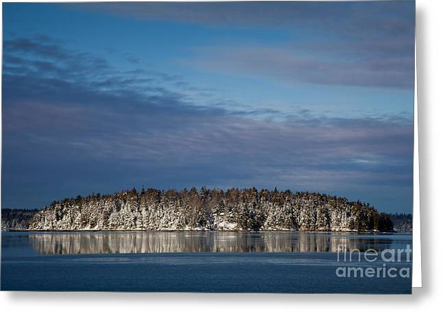 New England Wilderness Greeting Cards - Winter on Taunton Bay Greeting Card by Susan Cole Kelly