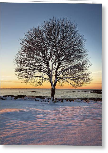 Winter On The Coast Greeting Card by Eric Gendron