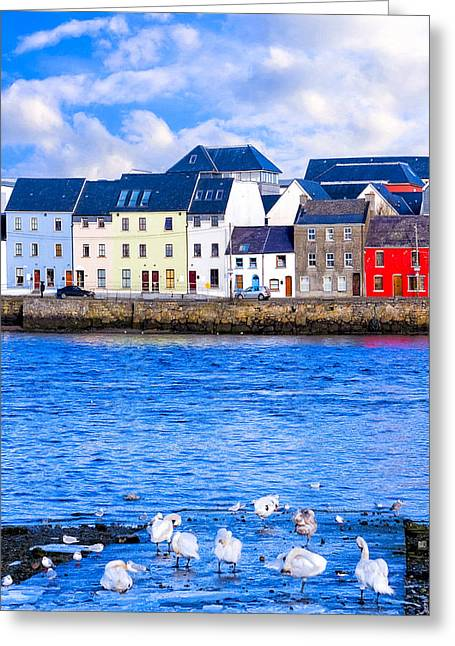 Galway Bay Greeting Cards - Winter on the Galway Waterfront Greeting Card by Mark E Tisdale