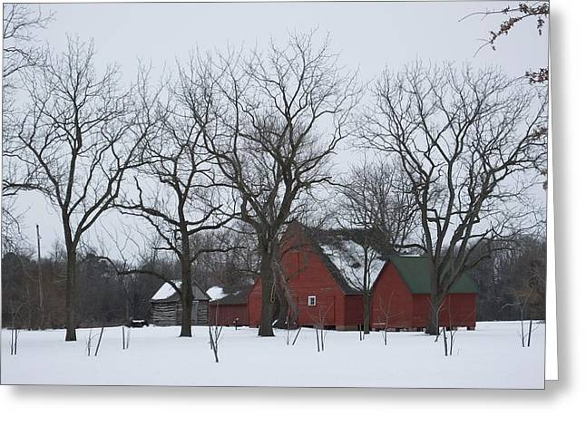 Snow Scene Landscape Greeting Cards - Winter on the Plantation Greeting Card by Francie Davis