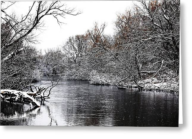 Wintry Greeting Cards - Winter On The Speed River Greeting Card by Debbie Oppermann