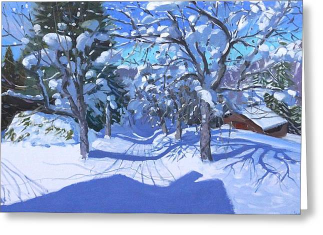 Bare Branches Greeting Cards - Winter Orchard  Morzine Greeting Card by Andrew Macara