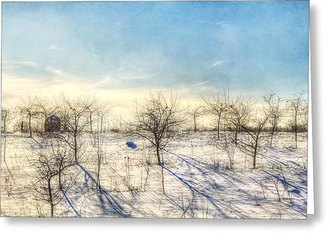 Winter Orchard - Vermont Farm Greeting Card by Joann Vitali