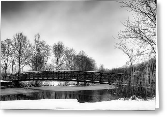 Wintry Greeting Cards - Winter Panorama Greeting Card by Fancy Crave