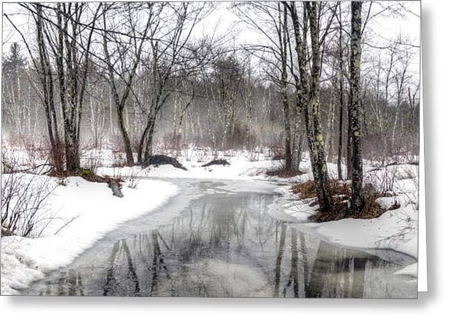 Wintry Greeting Cards - Winter Rain - Panoramic Greeting Card by Geoffrey Coelho