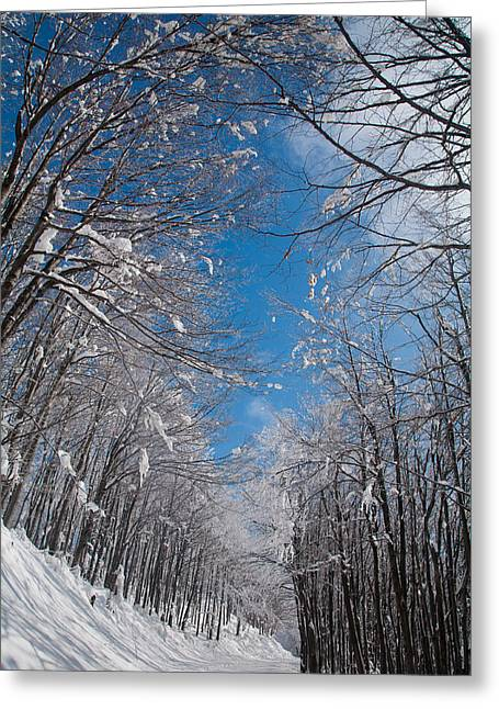 Mountain Road Greeting Cards - Winter Road Greeting Card by Evgeni Dinev