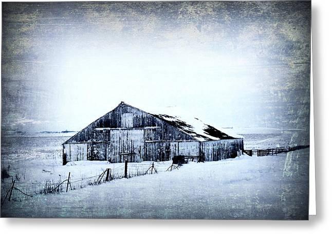Winter Scene Greeting Card by Julie Hamilton
