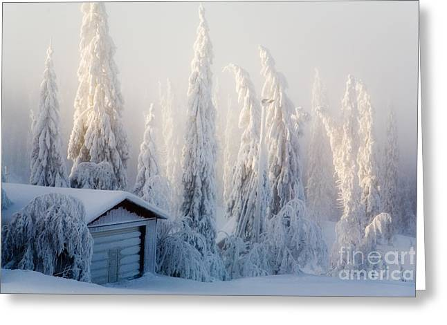 Fairyland Greeting Cards - Winter scene Greeting Card by Kati Molin
