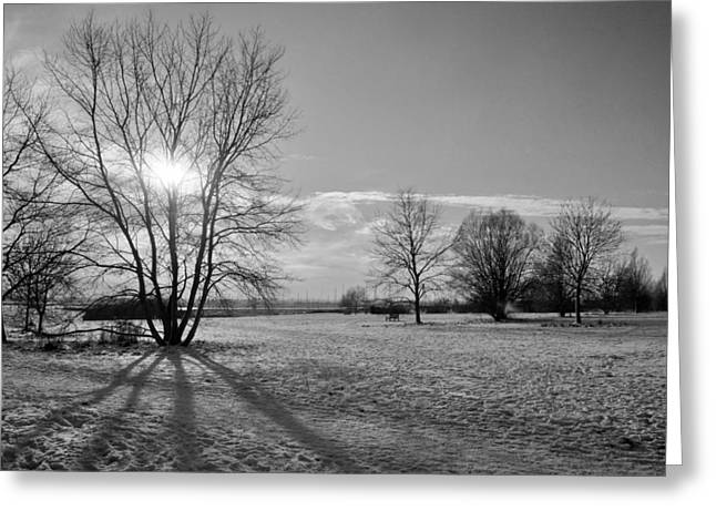 Rural Snow Scenes Greeting Cards - Winter Shadow Greeting Card by Terence Davis