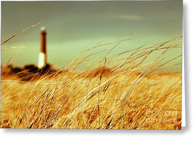 Barnegat Light Greeting Cards - Winter Shore Breeze Greeting Card by Dana DiPasquale