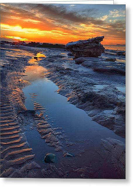 Minas Basin Greeting Cards - Winter Shore Sunset Greeting Card by Irwin Barrett