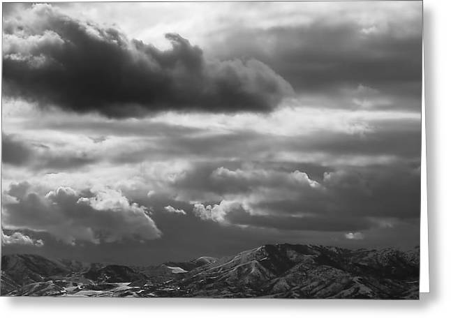 Bw Greeting Cards - Winter Sky Greeting Card by Rona Black