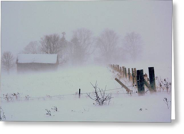 Winter Storm Greeting Cards - Winter storm Greeting Card by Julius Virca