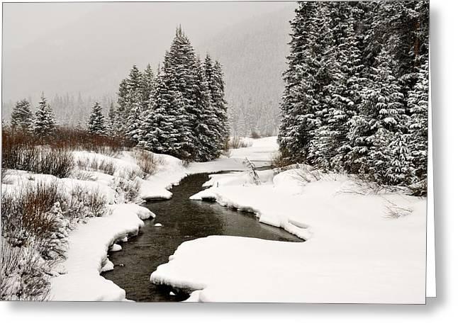 Winter Stream Greeting Card by Frank Remar