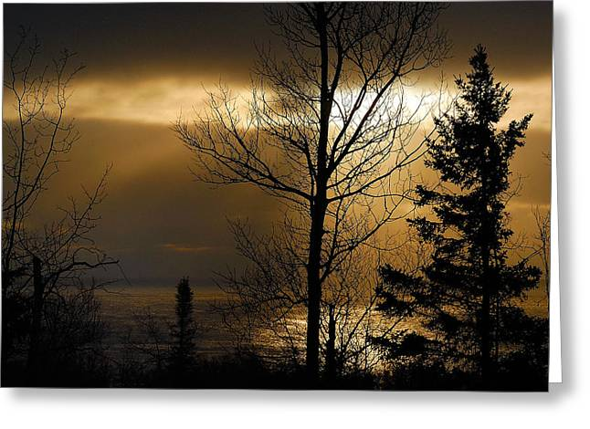 Silhouettes Greeting Cards - Winter Sunrise 1 Greeting Card by Sebastian Musial
