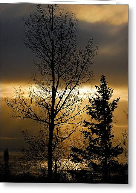 Lake Michigan Greeting Cards - Winter Sunrise 2 Greeting Card by Sebastian Musial