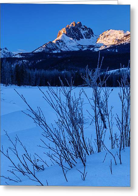 Sunlight Peaking Greeting Cards - Winter sunrise along Sawtooth Mountain Range Stanley Idaho USA Greeting Card by Vishwanath Bhat