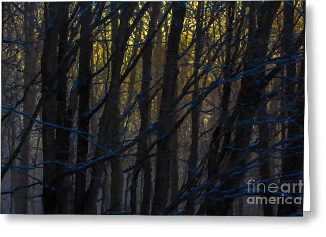 New England Winter Greeting Cards - Winter Sunrise Greeting Card by Diane Diederich