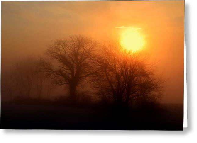 Lnature Greeting Cards - Winter Sunrise Greeting Card by Lita Kishbaugh