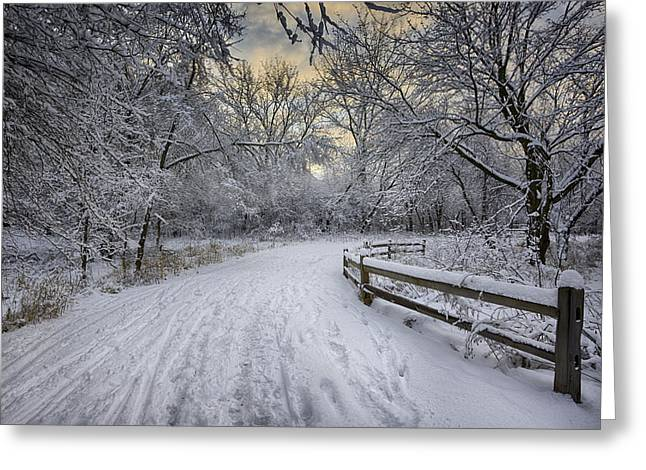 Winter Scene Photographs Greeting Cards - Winter Sunrise Greeting Card by Sebastian Musial