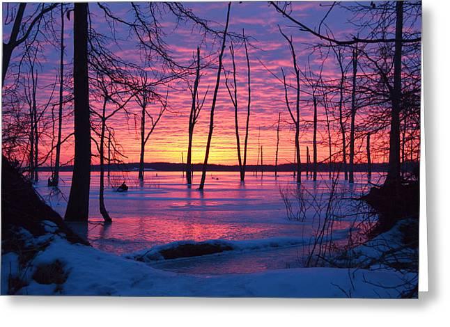 Manasquan Reservoir Greeting Cards - Winter Sunrise Greeting Card by Wally Bilotta
