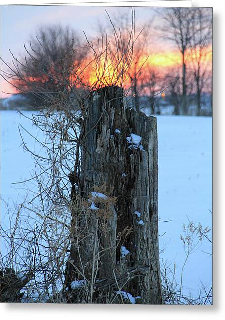 Indiana Winters Digital Art Greeting Cards - Winter Sunset Greeting Card by Bruce McEntyre