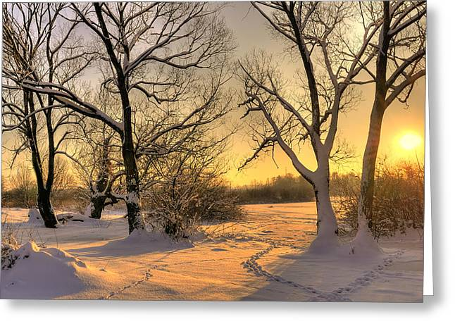 Best Sellers -  - Snowy Evening Greeting Cards - Winter Sunset Greeting Card by Jaroslaw Grudzinski