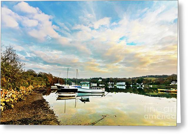 Winter Sunset Greeting Card by Terri Waters