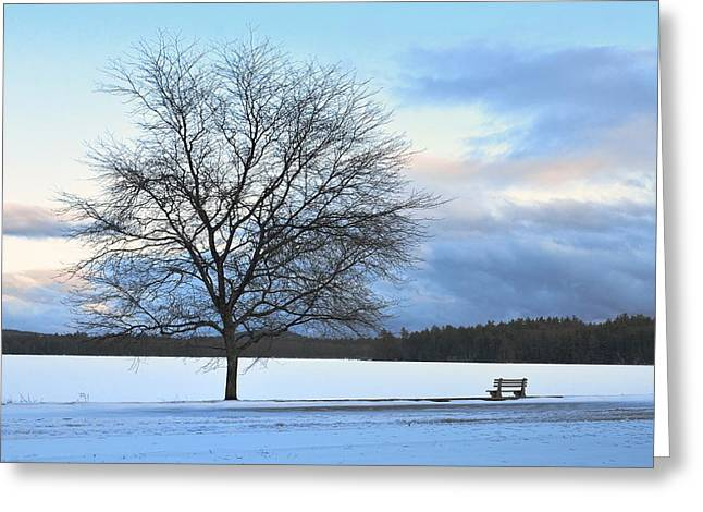 Newengland Greeting Cards - Winter Greeting Card by Toshihide Takekoshi