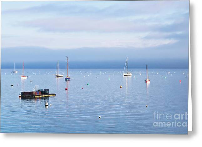Winter Tranquility In Carrick Roads Greeting Card by Terri Waters