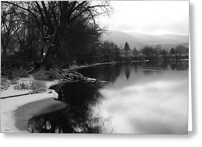 Winter Tree Reflection - Black and White Greeting Card by Carol Groenen