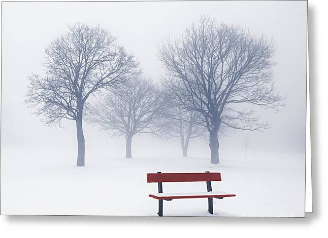 Frosty Greeting Cards - Winter trees and bench in fog Greeting Card by Elena Elisseeva
