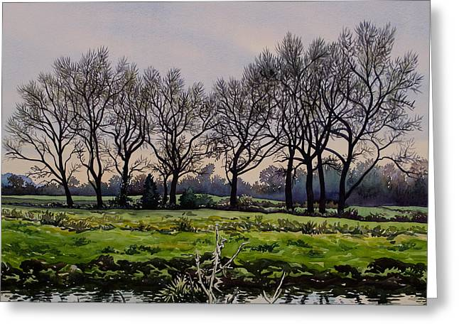 Winter Trees  Greeting Card by Christopher Ryland