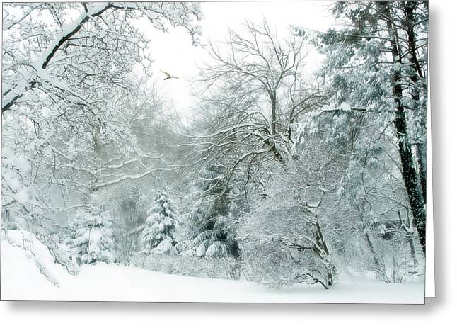 Winter Landscape Digital Greeting Cards - Winter Whisper Greeting Card by Jessica Jenney