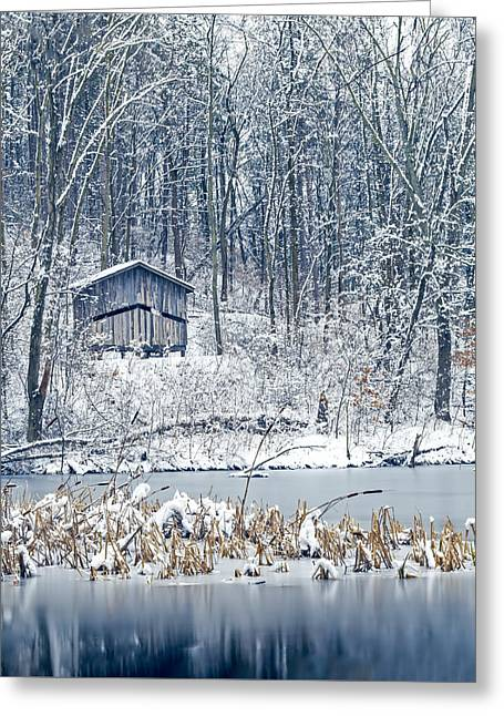 Nature Center Greeting Cards - Winter Wonderland 1 Greeting Card by Sharon Norman