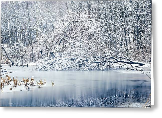Nature Center Pond Photographs Greeting Cards - Winter Wonderland 2 Greeting Card by Sharon Norman