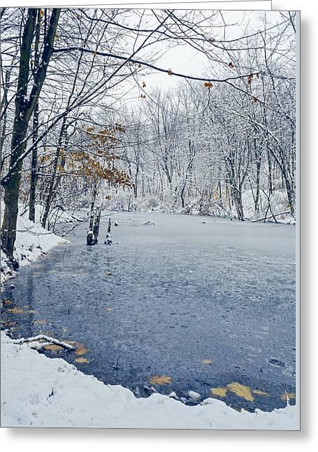 Winter Wonderland 3 Greeting Card by Shara Lee